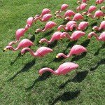 Ashley-Brooke-Designs-Pink Flamingos