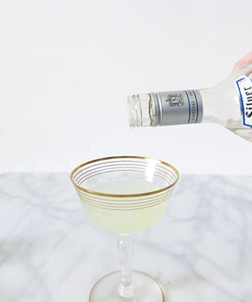 Ashley Brooke Designs Skinny Margarita Recipe 5