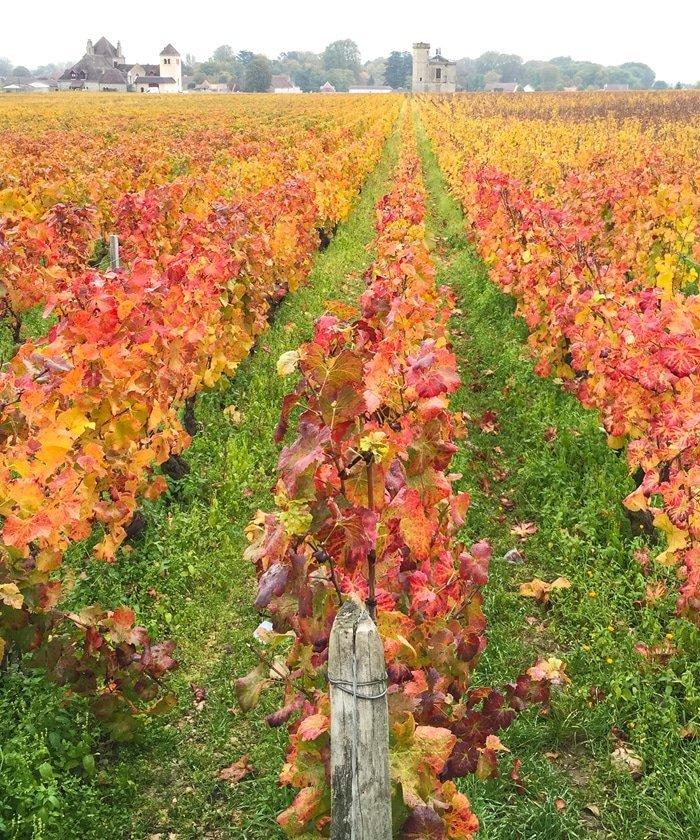 Burgundy, France 2