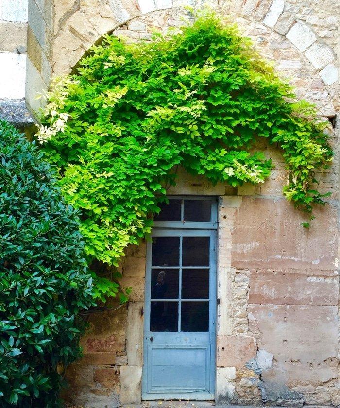 Burgundy France 7