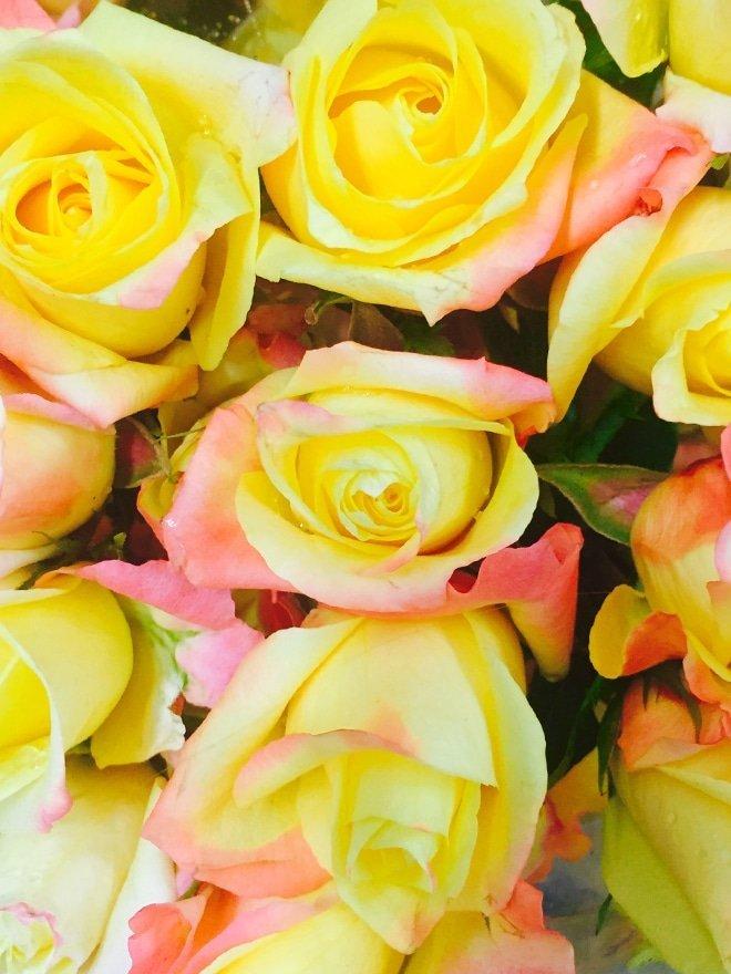 Fall Roses via Ashley Brooke Designs- Blog