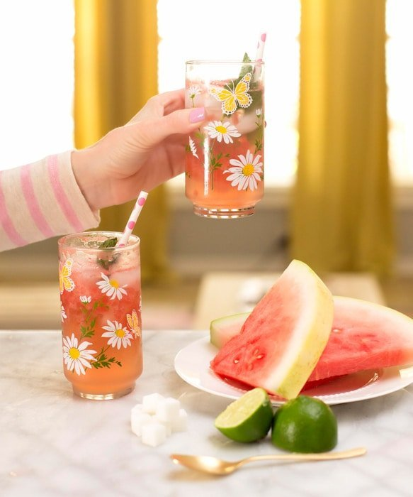 Ashley Brooke saying Cheers! with Watermelon Mojito
