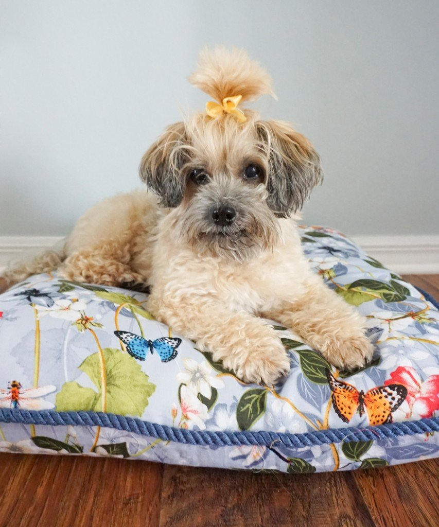 Ashley Brooke Designs - Lucy's Dog Bed