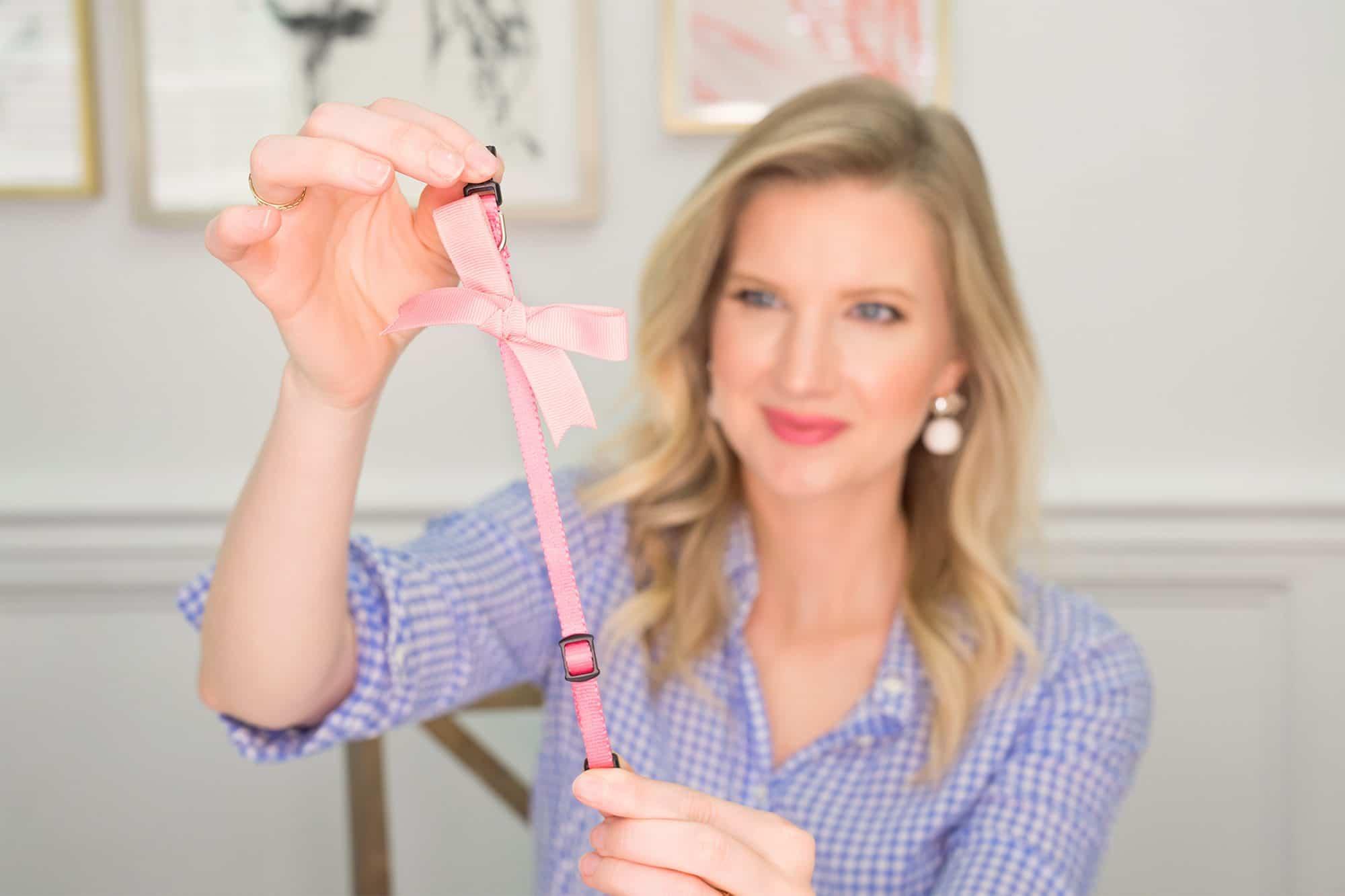 Dolly's Bow Collar DIY - www.ashleybrookedesigns.com