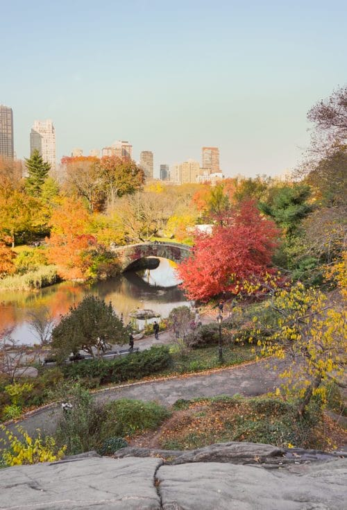 NYC in the Fall | www.ashleybrookedesigns.com