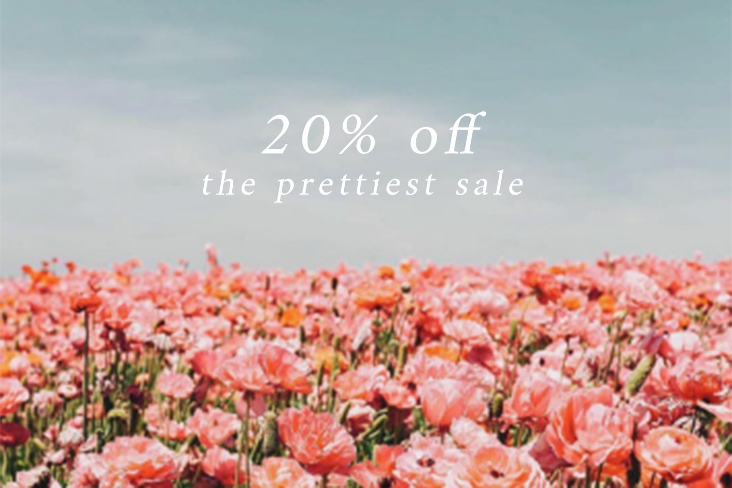 20% Sale You Don't Want to Miss!