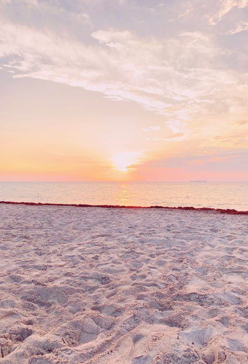 Miami Sunset - www.ashleybrookedesigns.com