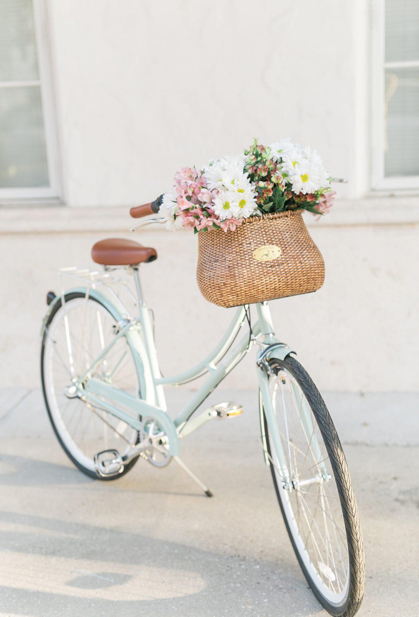 Ashley Brooke's Bike and Bike Basket with Flowers