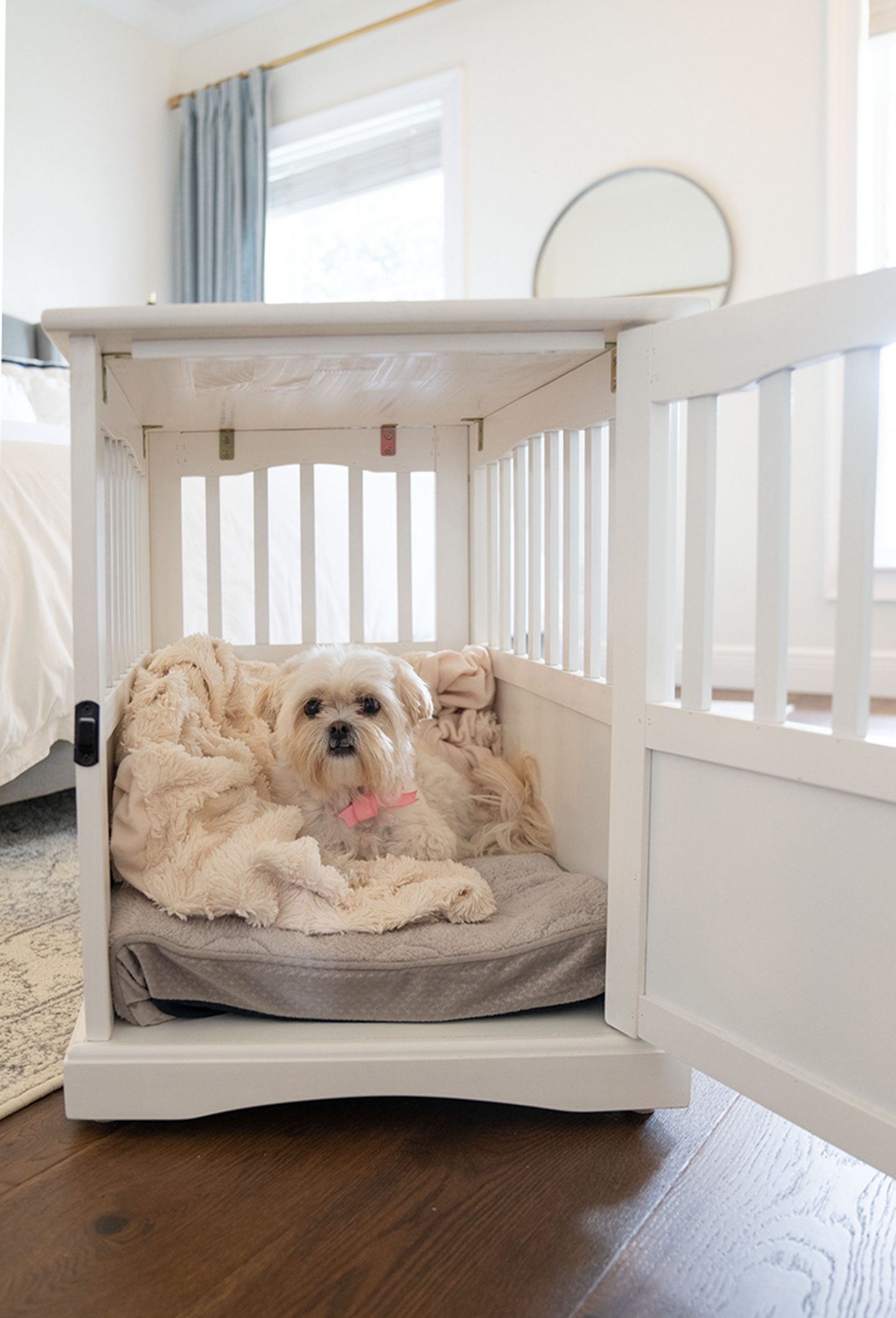 "Ashley Brooke's dog Dolly in her new ""dog house"""