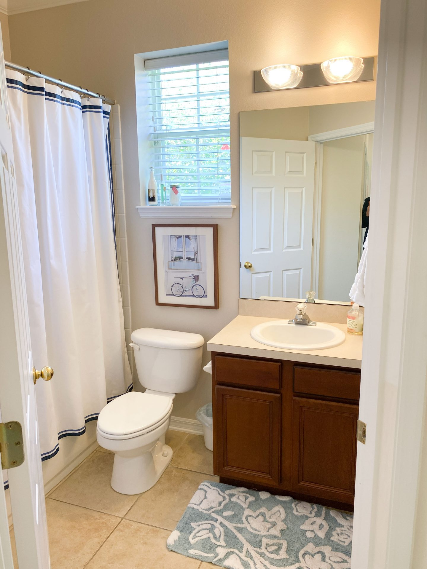 Before the renovation - picture of bathroom