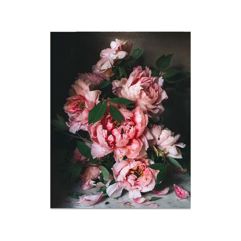 Fine Art Prints Pink floral