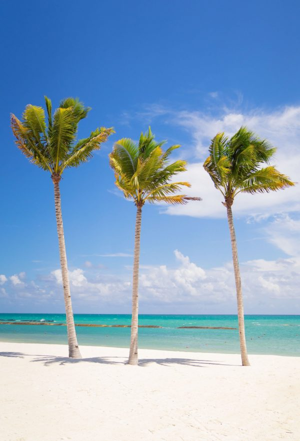 Mexico - Beach - Ashley Brooke v